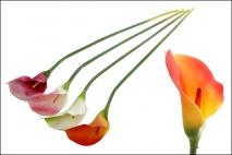 Kwiat sztuczny kalia 69cm