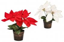 Kwiat sztuczny - poinsecja 24cm