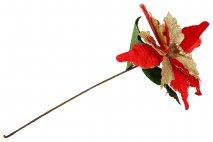 Kwiat dekoracyjny - poinsecja