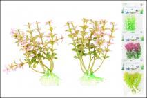 Kpl Rośliny do akwarium 8x10cm