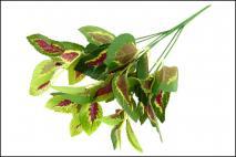 Bukiet liści dekoracyjnych