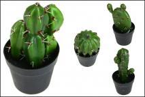 Kaktus w doniczce 15x21cm, mix