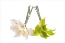 Kpl Kwiat sztuczny kalia 8szt 36cm 2 kolory