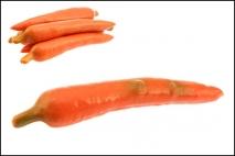 Warzywo - marchew 20cm